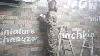 【内外壁画ペイント☆葉っぱ・ロゴマーク・猫シルエット】@東京都渋谷区『ペットショップCoo&RIKU』様