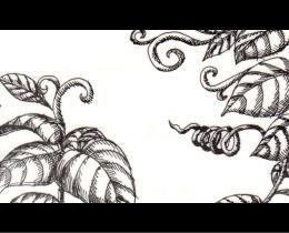 手書き名刺デザイン18