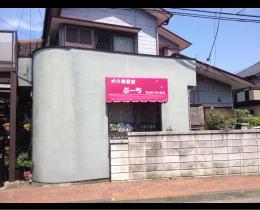 ぷーち様 - 東京都東大和市/トリミング・ペットホテル・犬の美容室・羊毛教室 店舗壁画施工前写真1